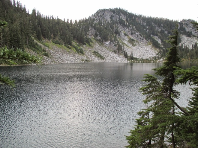 Pear Lake Large