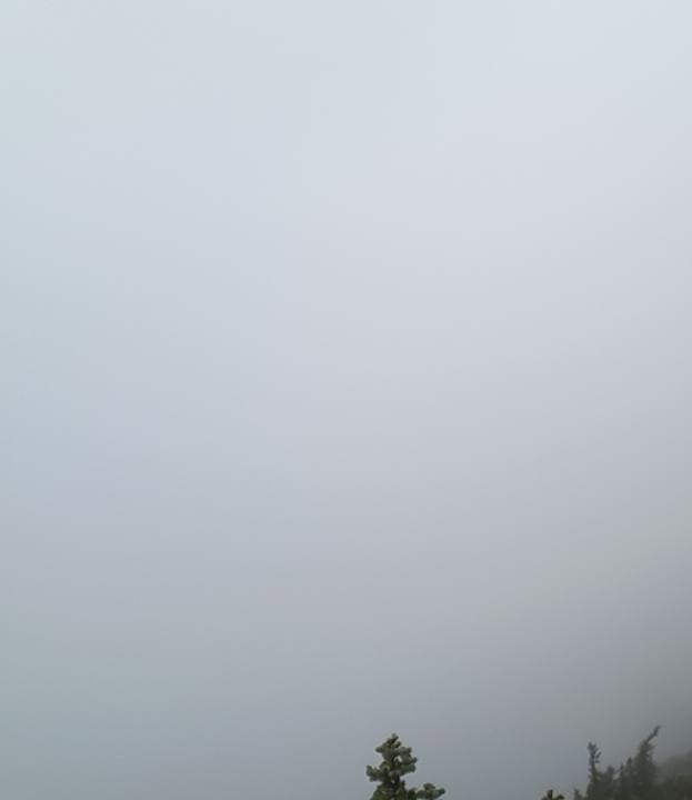 zen-woody-pass-fog